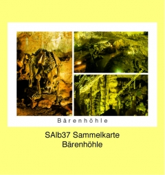 SAlb37