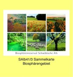 SAlb41_3