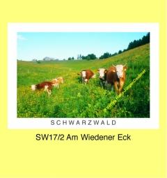 SW17_2