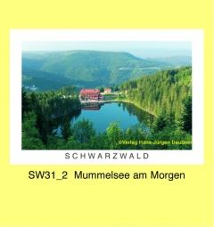 SW31_2