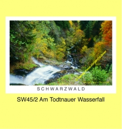 SW45_2