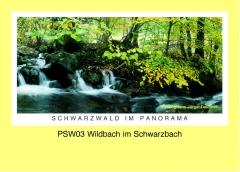 PSW03