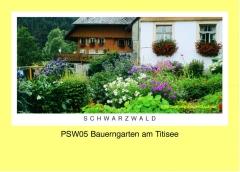 PSW05