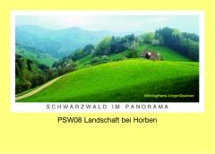 PSW08